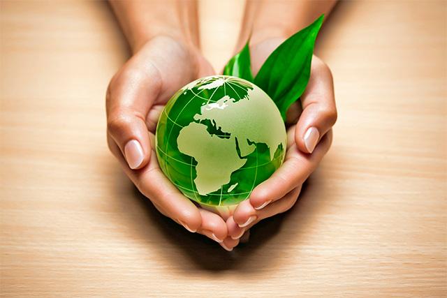 Biotecnologia à serviço da Sustentabilidade